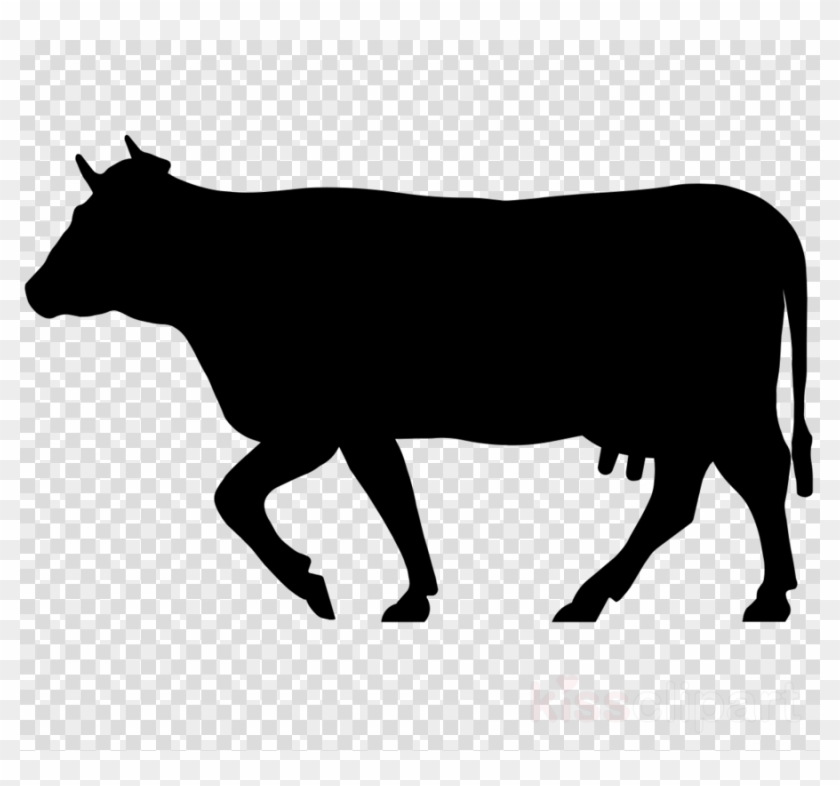 Cow Icon Png Clipart Beef Cattle Welsh Black Cattle - Png