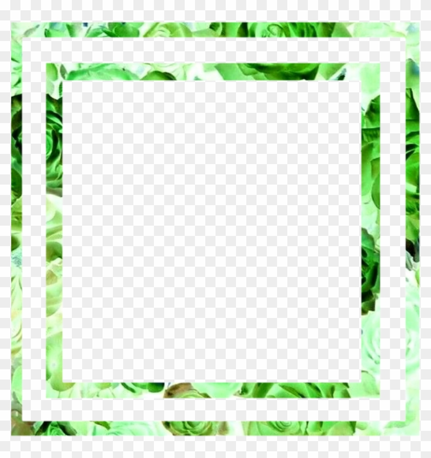 Green Frame Boarder Aesthetic Leafs Picture Frame Hd Png Download 1024x1024 5734196 Pngfind