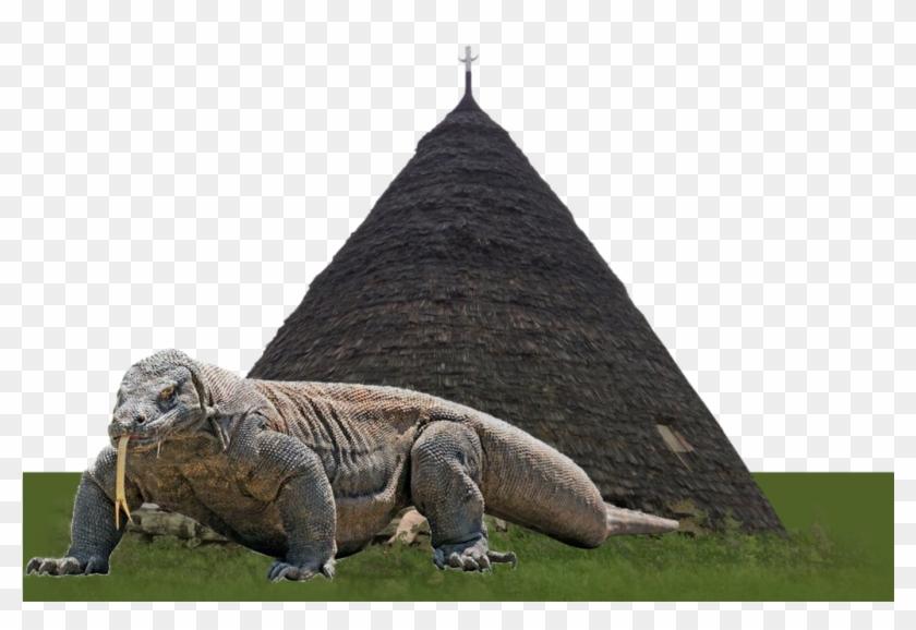 Resultado de imagen para Komodo Island dragon png