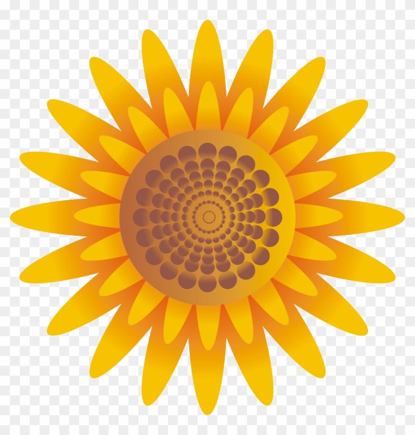 Bagi Anda Yang Membutuhkan Bunga Matahari Tanpa Background Heart
