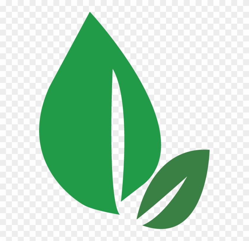 Green Leaves Logo Leaves Png Transparent Png 576x734 597457 Pngfind