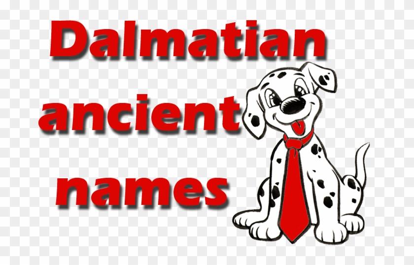 Real And Unique Ancient Dalmatian Names - Good Dalmatian Dog