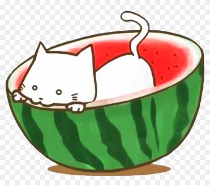 Sctropical Tropical Watermelon Sandia Kawaii Scwatermel Sandia