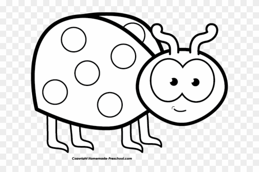 Ladybug Clipart Black And White - Black And White Bug Clip Art Free, HD Png  Download - 640x480(#6280032) - PngFind