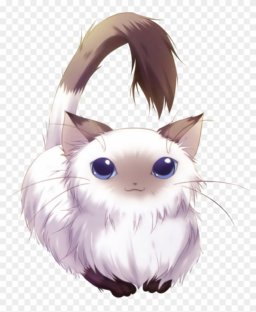 Adorable Anime Cats Render Chat Hd Png Download 1231x1440 6303434 Pngfind