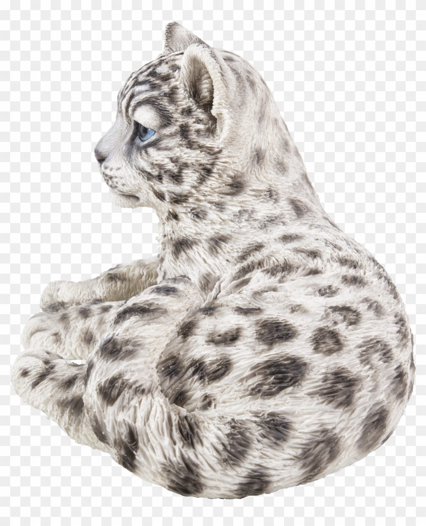 Snow Leopard, HD Png Download - 2781x3262(#6390928) - PngFind
