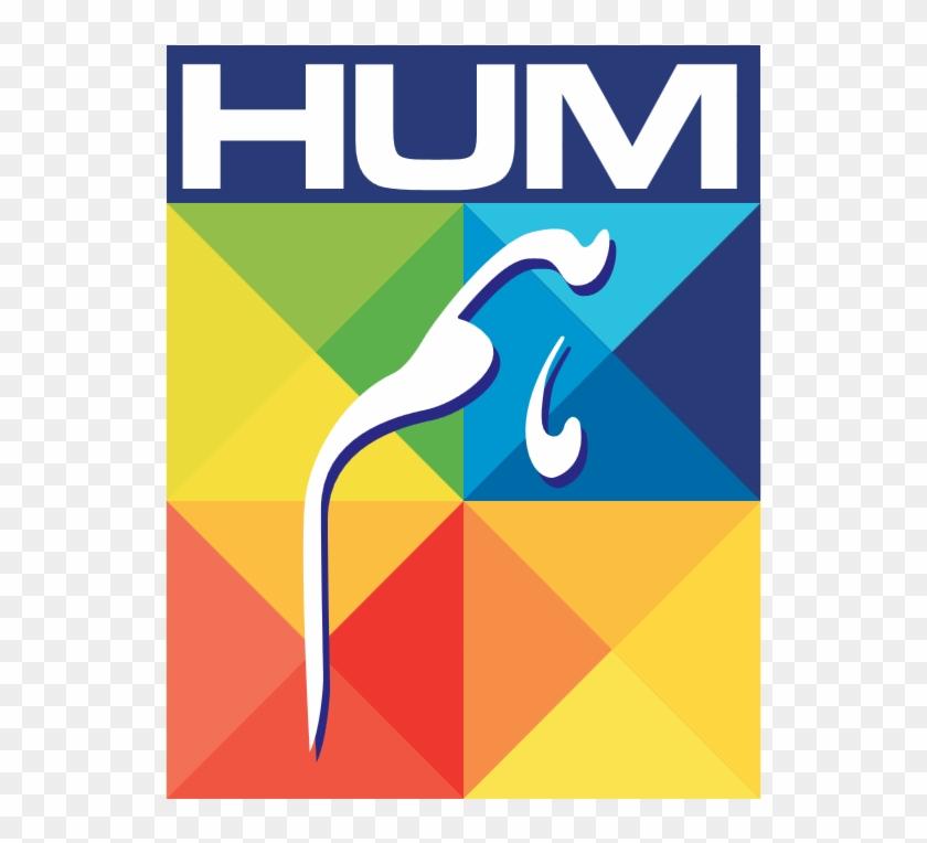 Hum Network Limited Logo - Live Hum Tv Logo, HD Png Download