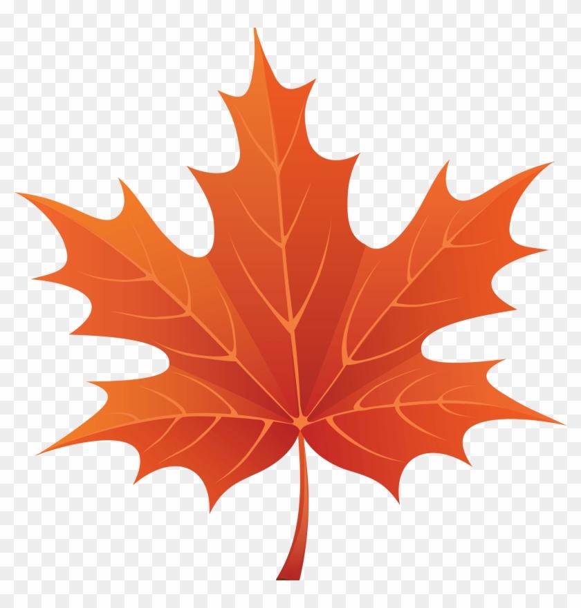 Brown Maple Leaf - Autumn Leaf Clipart Png, Transparent Png