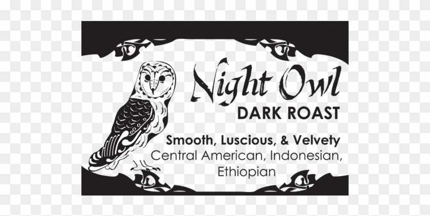 Night Owl Revised - Oca, HD Png Download - 600x600(#6417361