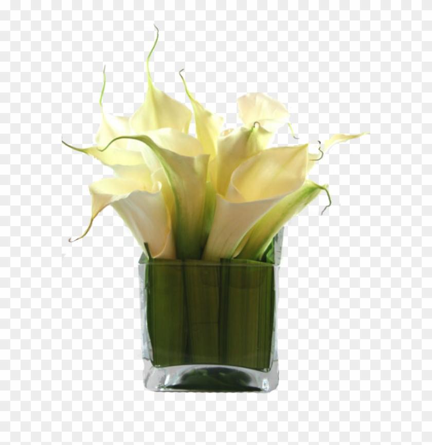 Calla Lily Png Calla Lily Vase Arrangements Small Transparent