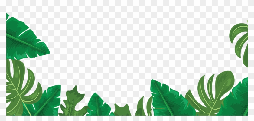 Share The Shaka Header Leaves Clear Hd Png Download 1154x760 6458188 Pngfind 115,000+ vectors, stock photos & psd files. share the shaka header leaves clear hd