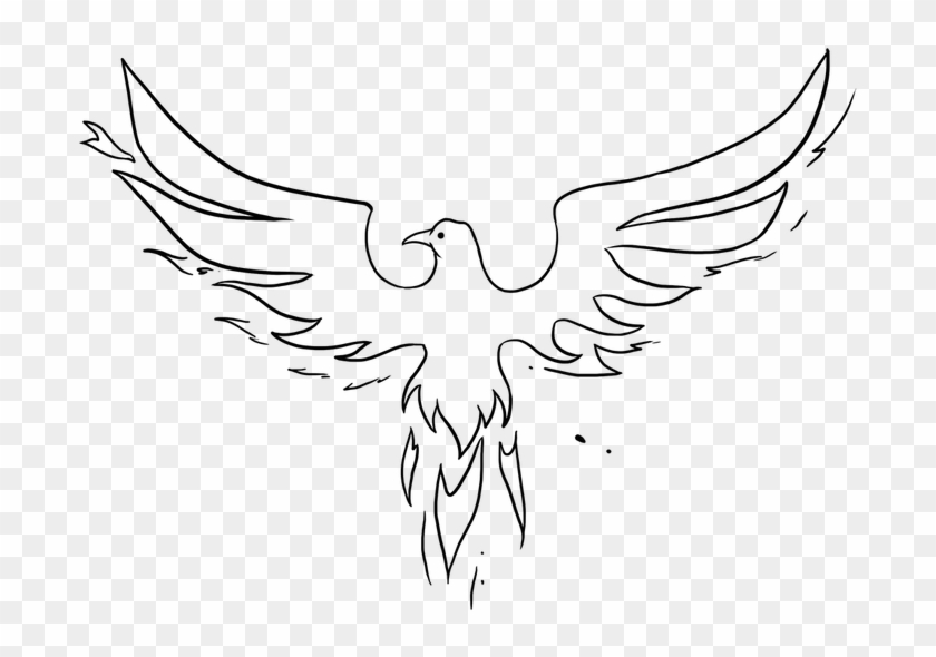 Easy Drawing Guides Beginner Phoenix Drawings Easy Hd Png Download 1024x725 6489014 Pngfind