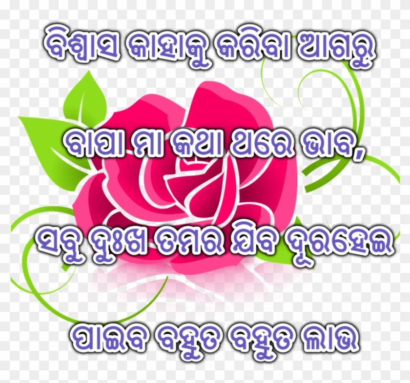 Odia Love Shayari Images Best Collections Are Here - Flor