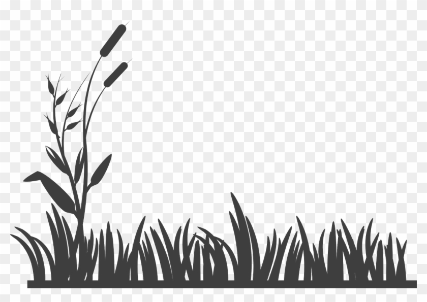 grass vector silhouette png grass black and white transparent png 960x634 652446 pngfind grass vector silhouette png grass