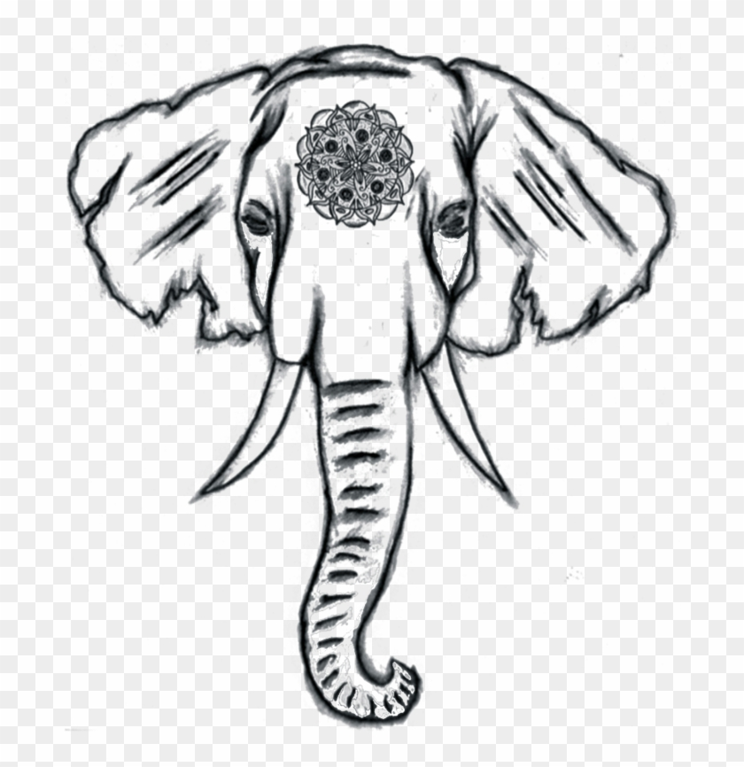 Image Result For Easy Elephant Drawing Tumblr Canvas Cute Easy Elephants To Draw Hd Png Download 700x840 659222 Pngfind You can download free sunflower png images with transparent backgrounds from the largest collection on pngtree. image result for easy elephant drawing