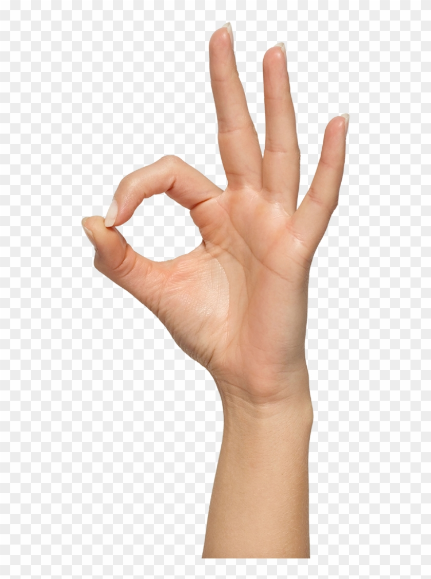 Ok Hand Sign Meme Zhest Ok Png Hd Png Download 1280x1048 6507767 Pngfind Including transparent png clip art, cartoon, icon, logo, silhouette, watercolors, outlines, etc. ok hand sign meme zhest ok png hd