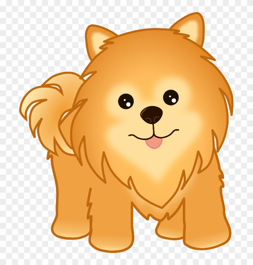 Pomeranian Puppy Dog Clipart Of Pomeranian Dogs Hd Png Download