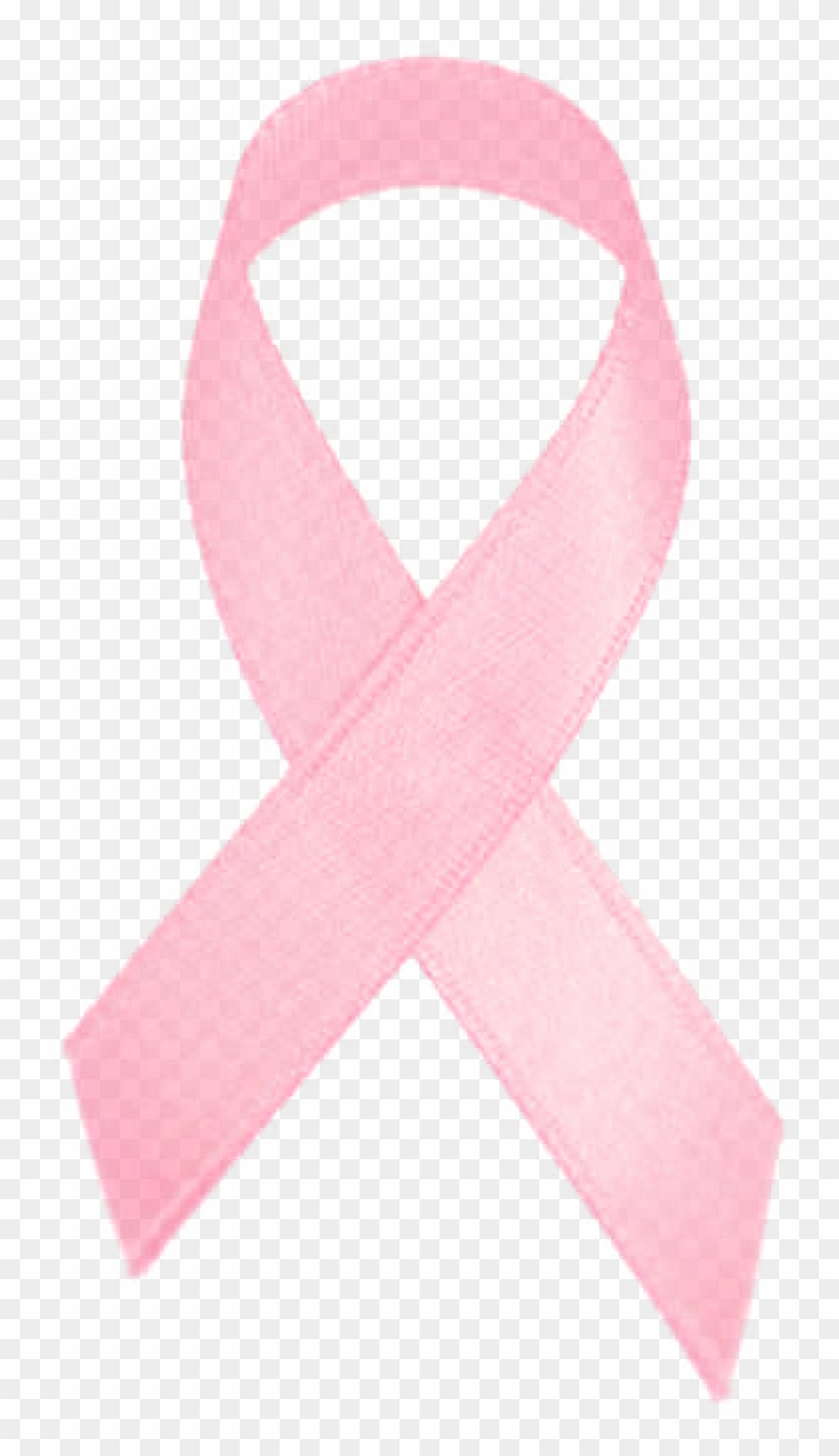 Pink Ribbon Cancer Logo Png Images27 Breast Cancer Transparent Png 1068x1600 6560143 Pngfind