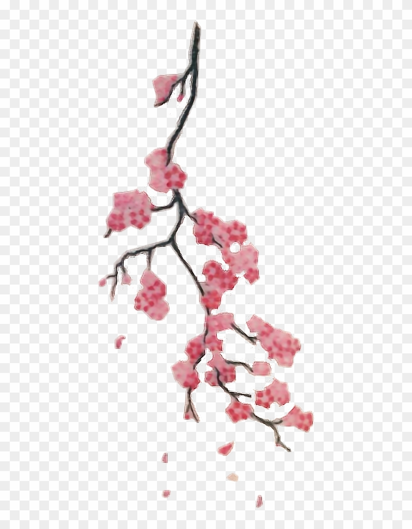 Report Abuse Small Cherry Blossom Branch Tattoo Hd Png Download 446x998 6666140 Pngfind