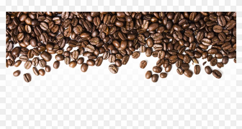 Seed Clipart Kopi Coffee Beans Transparent Png Png Download 979x500 672892 Pngfind