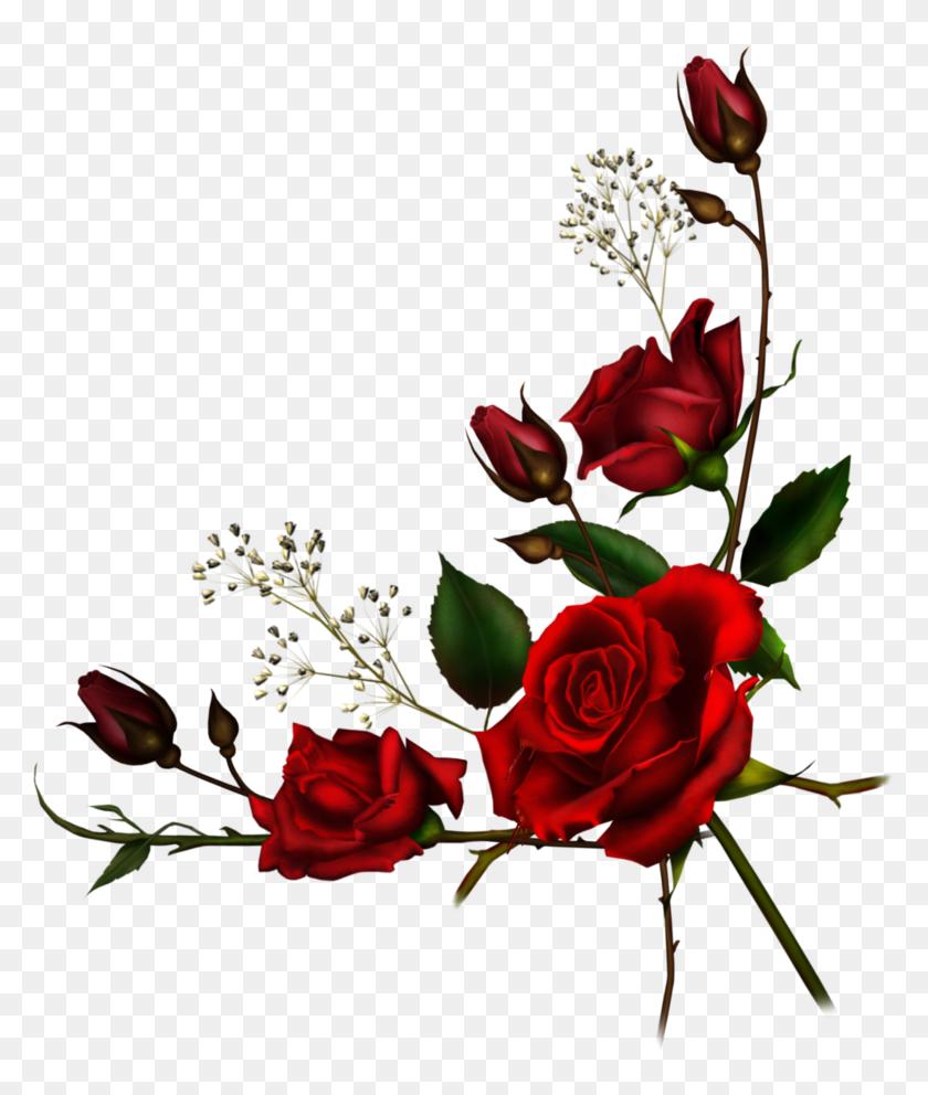 Red Rose Borders Png Png Download Transparent Red Roses Border