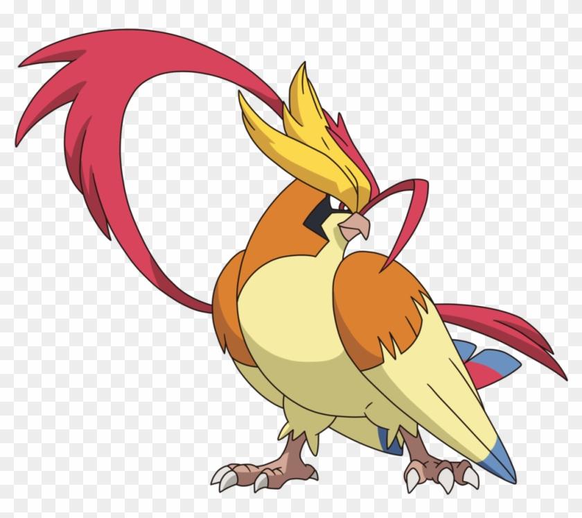 Png Draw Pokemon Mega Pidgeot Transparent Png 1024x889 748902 Pngfind