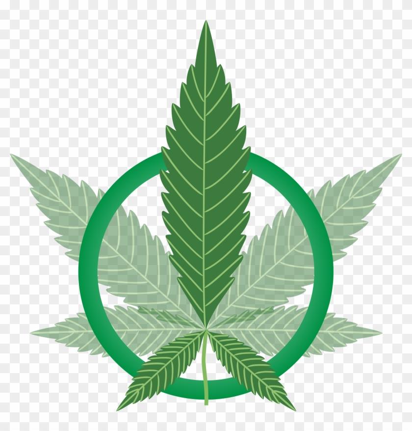 Картинки скачать марихуану готовим кашу из конопли
