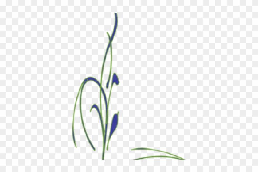 Vine Border Clip Art - Top Right Corner Designs - Free Transparent PNG  Clipart Images Download