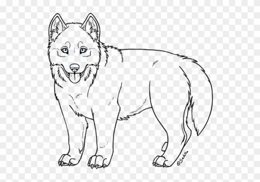 How To Draw A Dog Face Easy Easy Drawings Of A Husky Hd Png Download 608x553 772811 Pngfind