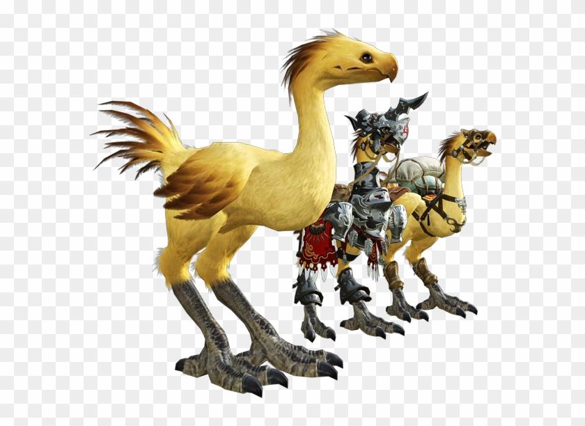 Eorzea De Chocobo For Piano Solo From Final Fantasy - Ffxiv Chocobo