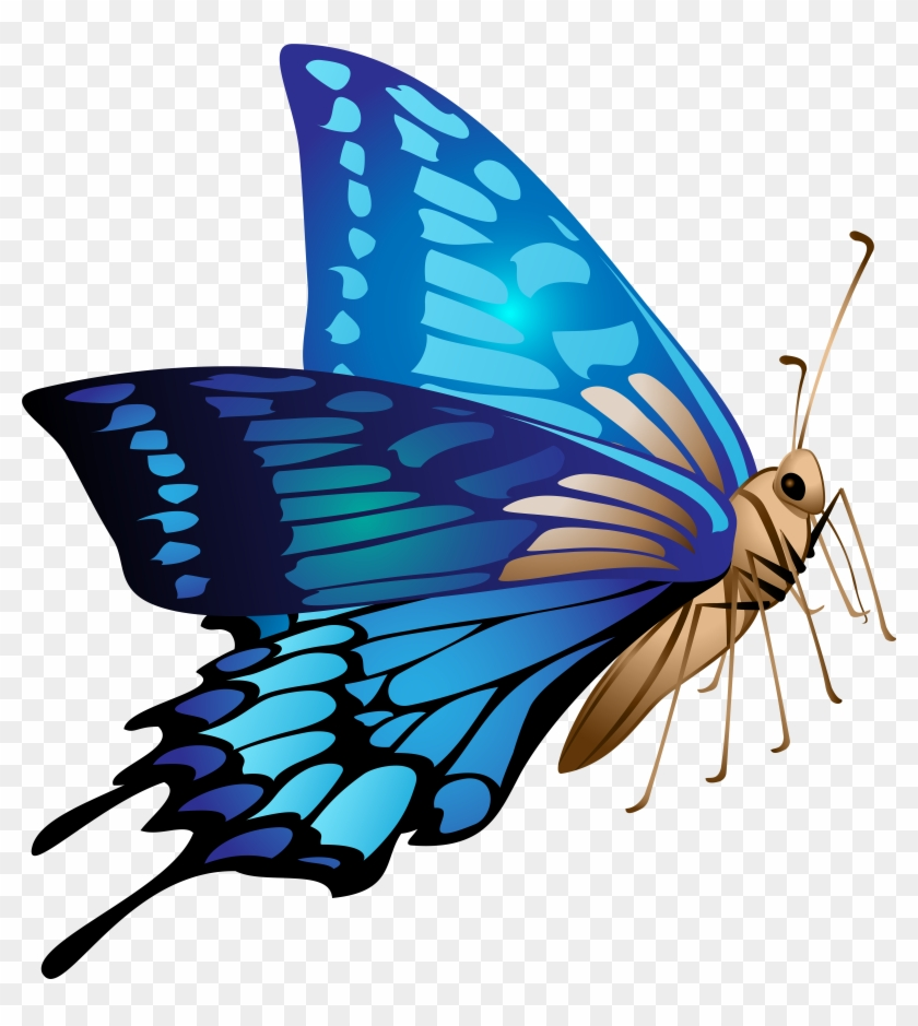Blue Butterfly Png Transparent Png 7469x8000 80738