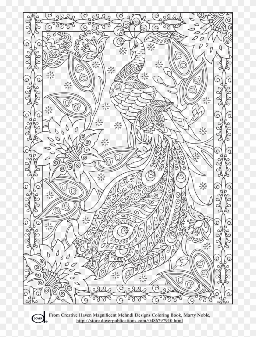 Peacock Feather Coloring S Colouring Adult Detailed Free