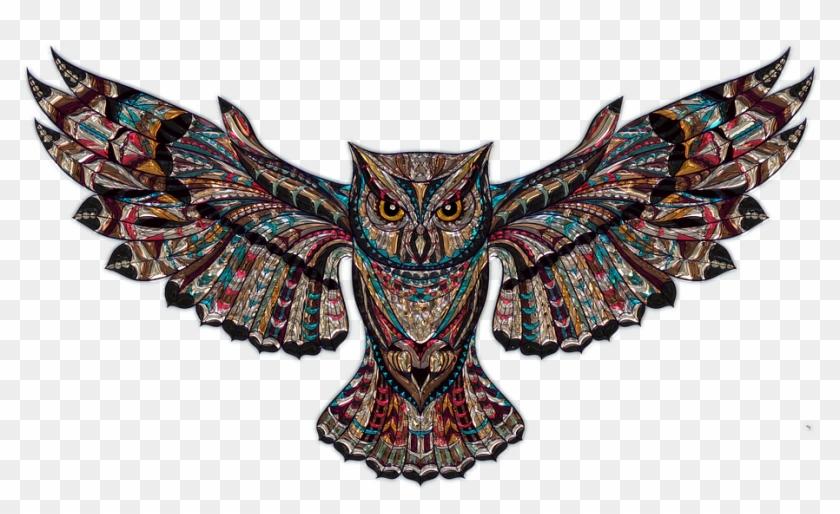 Illustrations Background Png Gambar Seni Burung Hantu