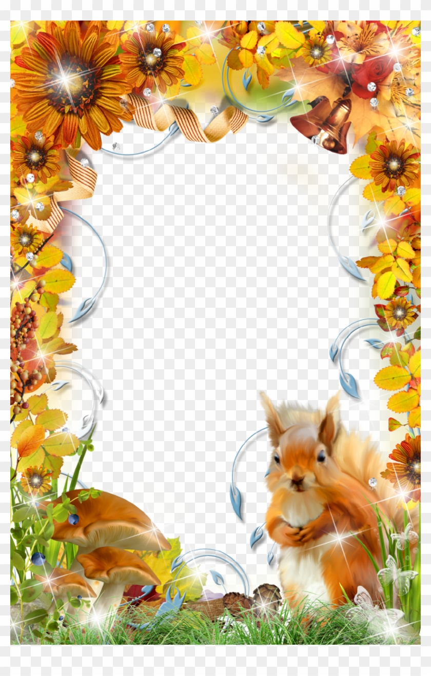 Autumn Photo Frame With Squirrel Page Borders, Borders