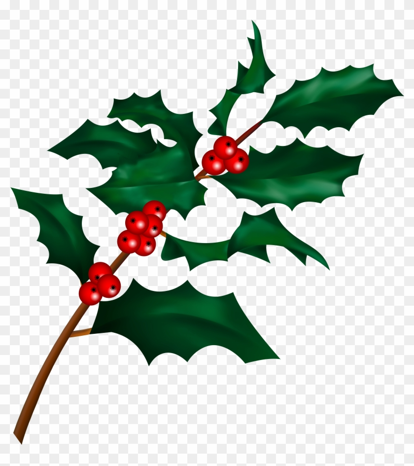 Christmas Holly Png.Christmas Holly Png Transparent Png 7427x8000 874954