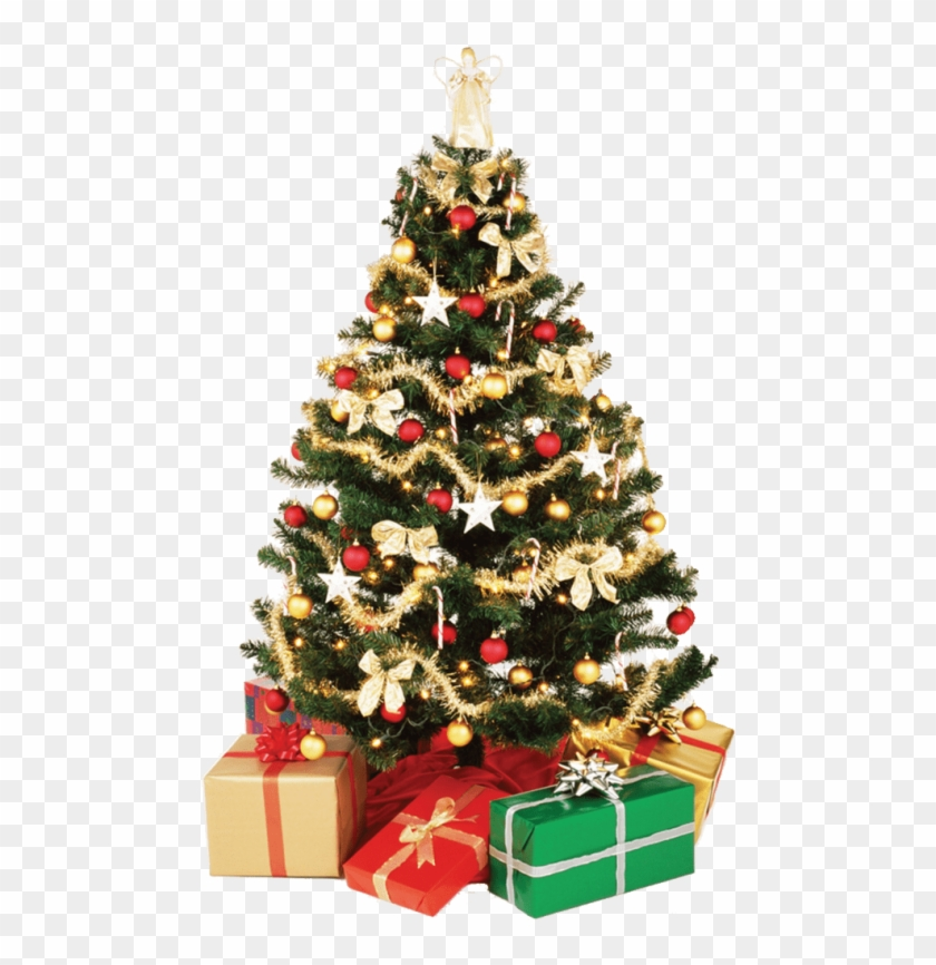 Christmas Tree Transparent Background.Free Png Download Small Christmas Tree Png Images Background