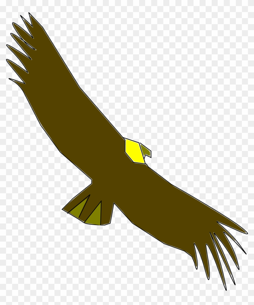 Png Download Condor At Getdrawings Com Free For Personal